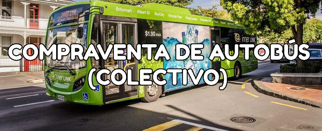 contrato autobus